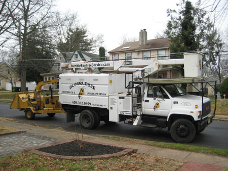 monroe-township-nj-tree-removal-services