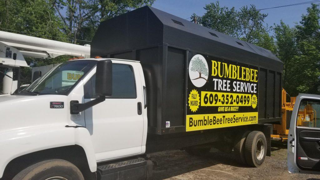 tree-removal-service-in-Barclay-NJ