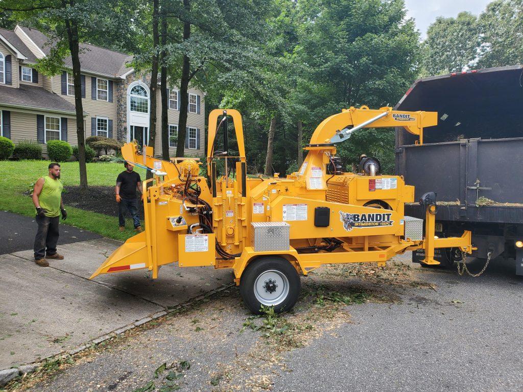 tree-removal-service-in-Clarksboro-NJ
