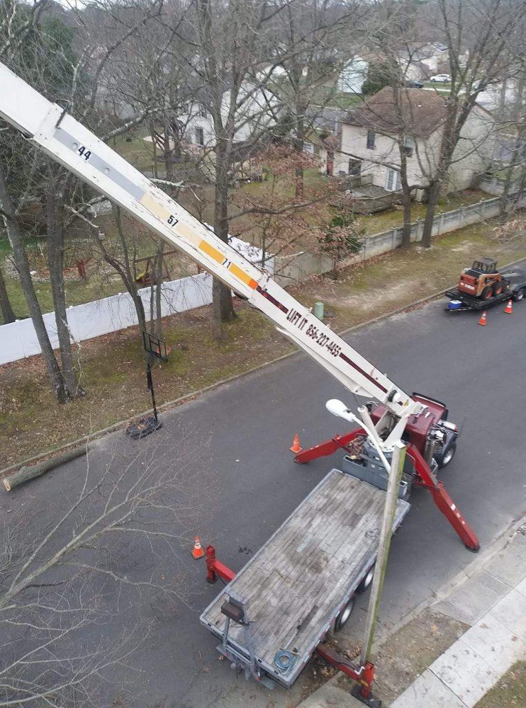 tree-removal-service-in-Clayton-NJ
